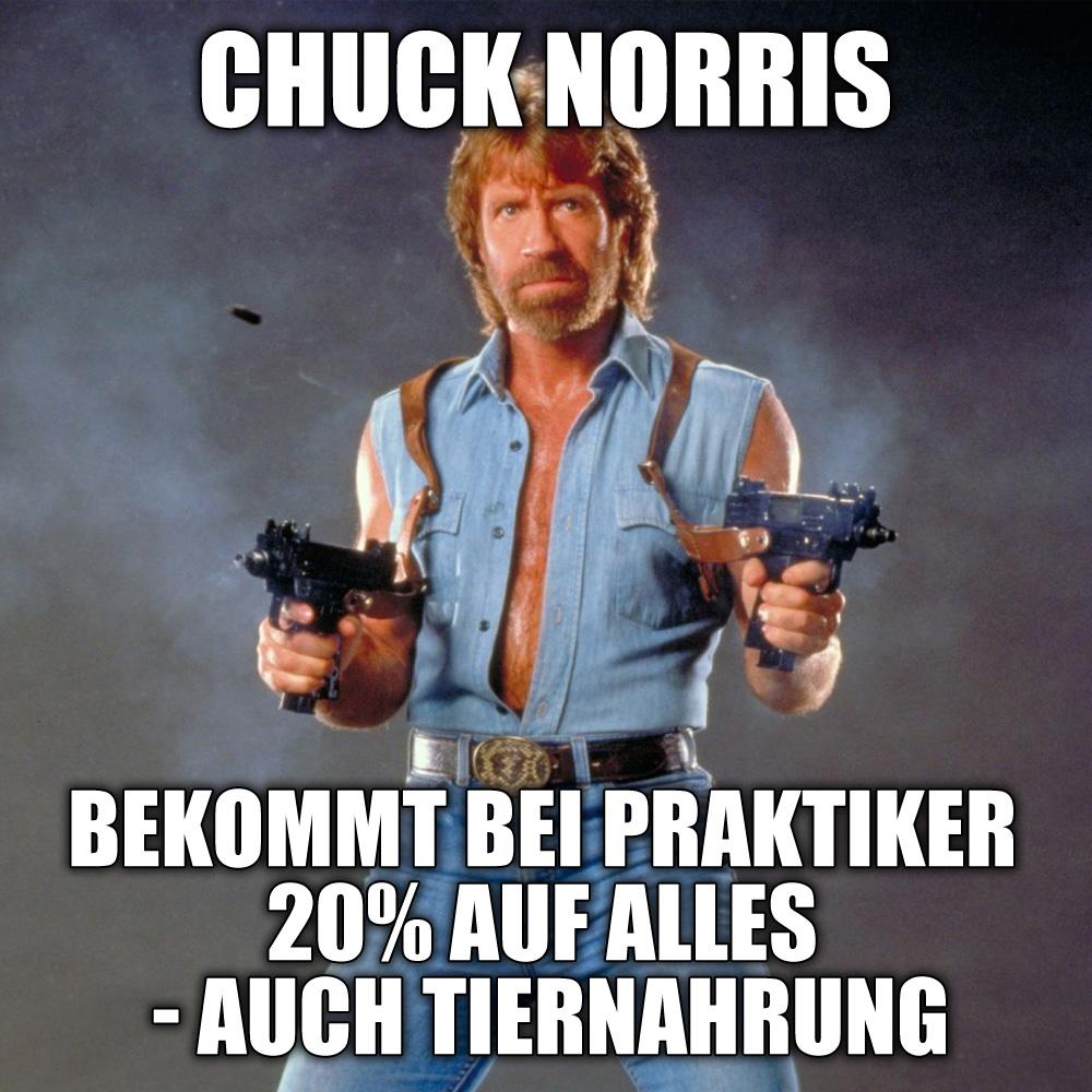 Sprüche Witze Chuck Norris